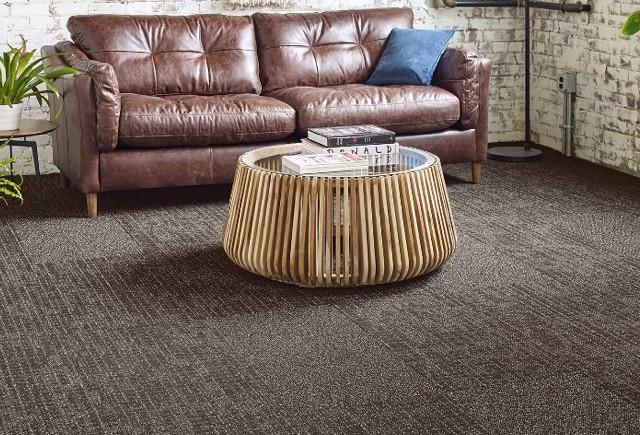 Couch on carpet   Markville Carpet & Flooring