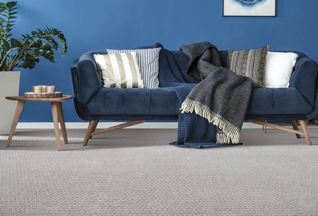 Blue couch on Carpet flooring | Markville Carpet & Flooring