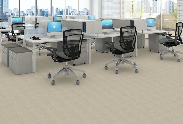 Patcraft Respite | Markville Carpet & Flooring