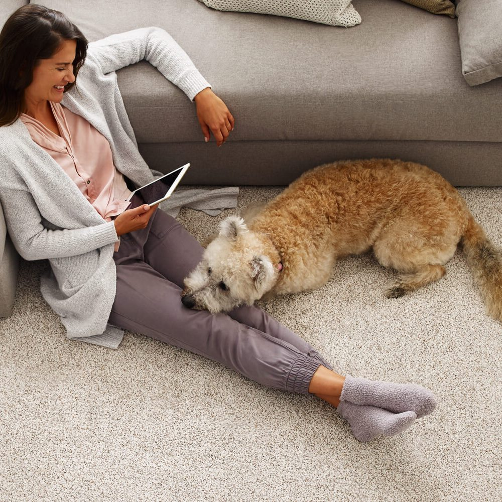 Lady with pet watching in tablet | Markville Carpet & Flooring