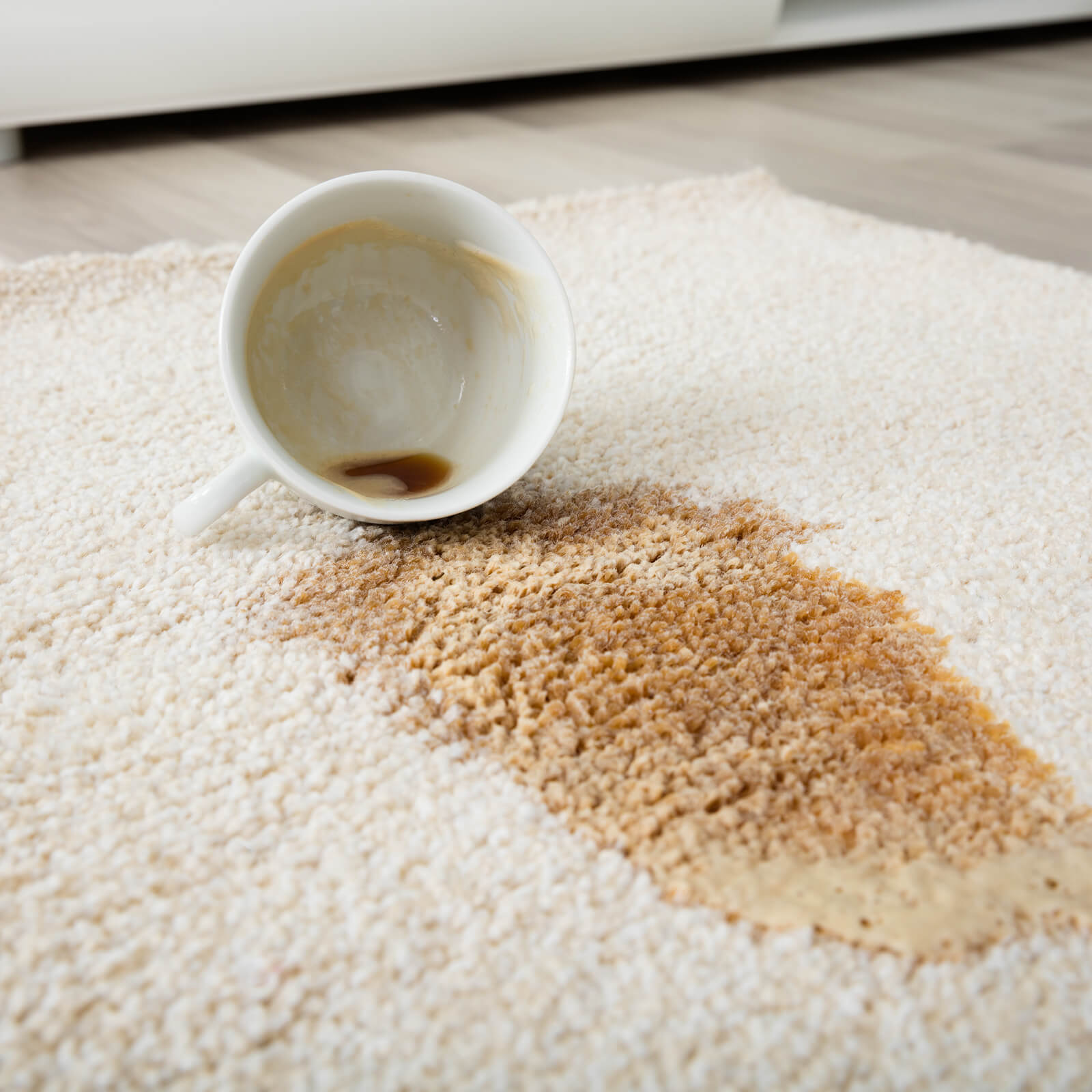 Coffee spill on area rug | Markville Carpet & Flooring