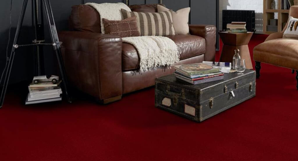Shaw Emphatic Carpet | Markville Carpet & Flooring